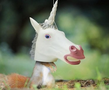 Unicorn Head Squirrel Feeder funny