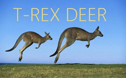better-names-deer