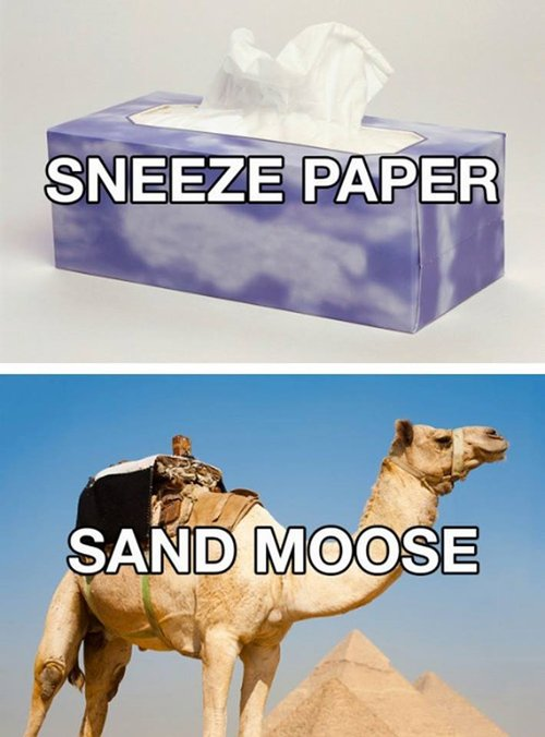 better-names-sneeze-paper