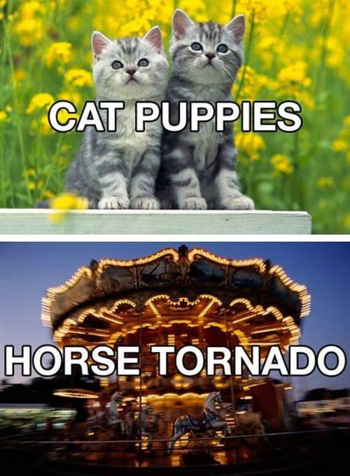 better-names-tornado