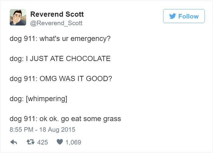 funny-dog-emergency-calls-chocolate