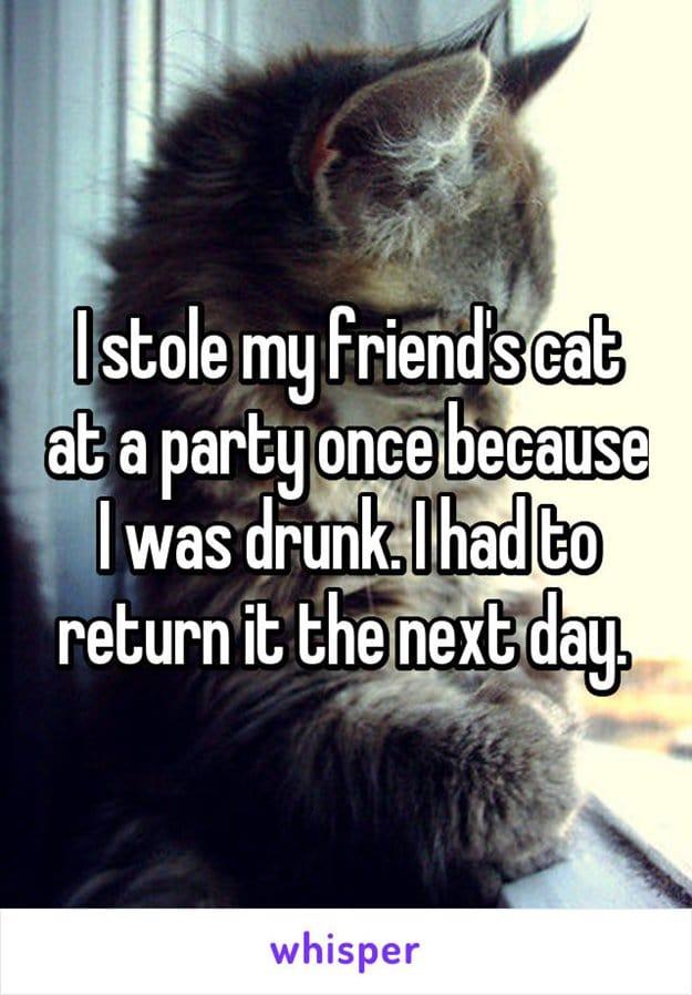 party-fails-cat