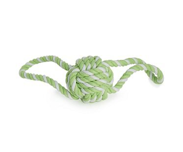 Bungee Rope Dog Toy outdoors