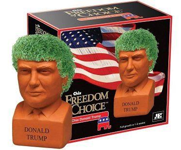 Donald Trump Chia Plant
