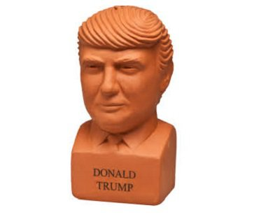 Donald Trump Chia Plant pottery