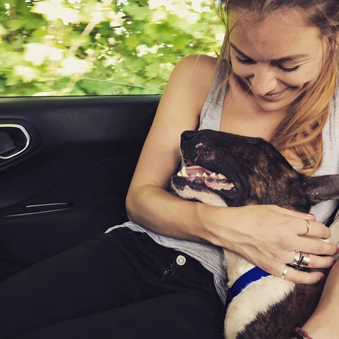 dogs-on-adoption-day-car