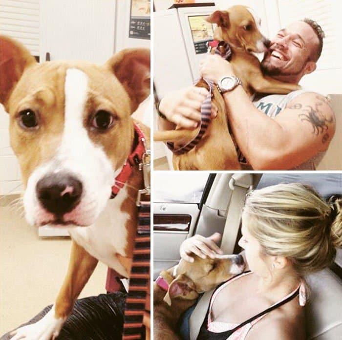 dogs-on-adoption-day-kaia