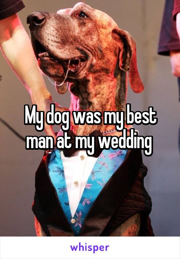 non-traditional-weddings-dog