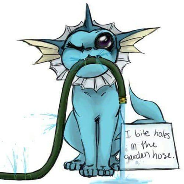pokemon-shaming-hose