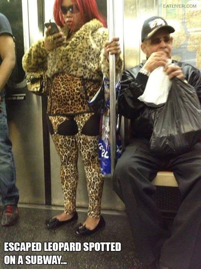 public-transport-crazies-leopard