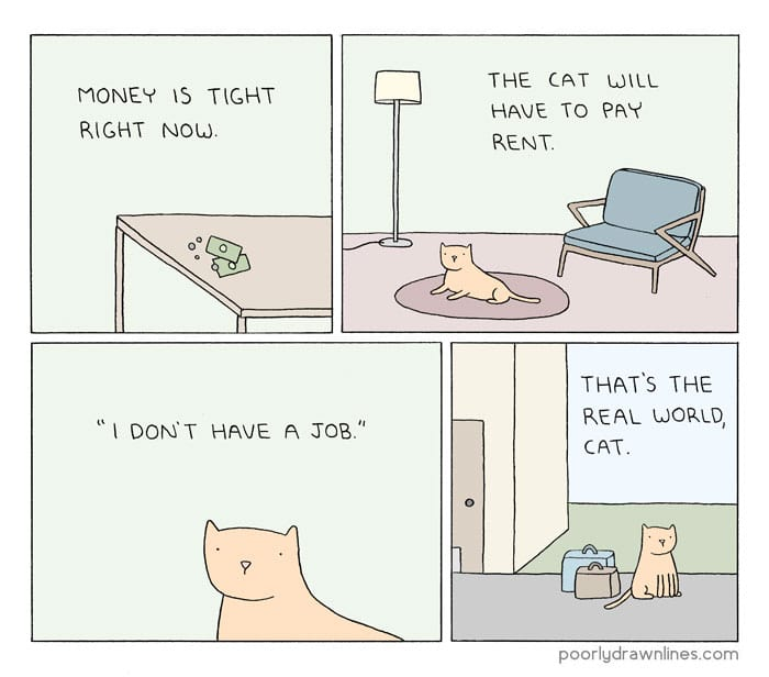 Funny-Animal-Comics-cat