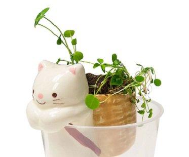 Self-Watering Animal Planters cat