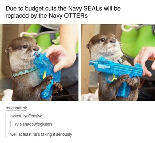 adorable-otters-navy