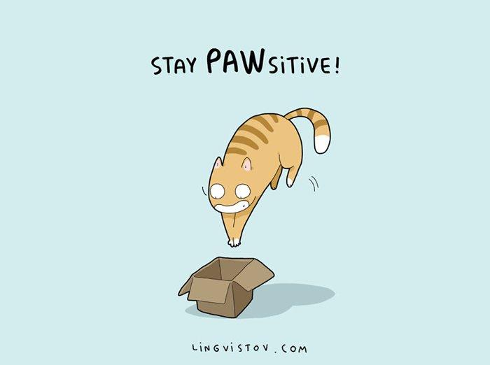 cat-puns-box