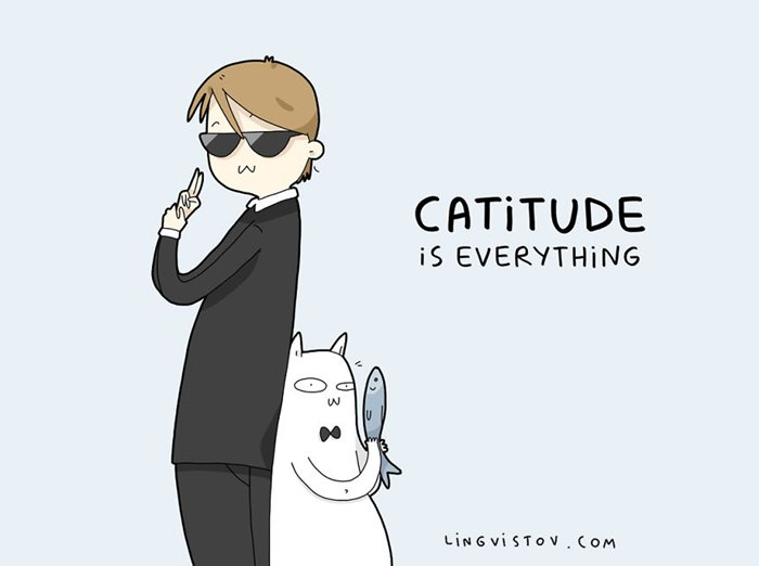 cat-puns-good-catitude