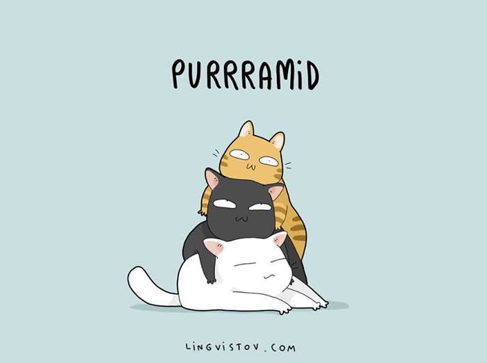 cat-puns-purrramid