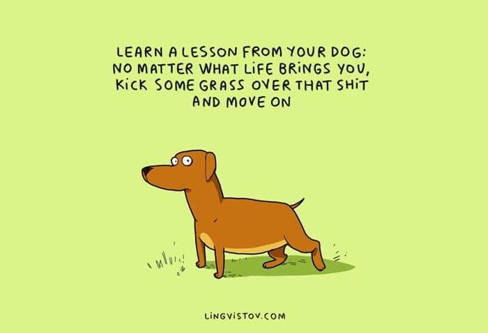 dog-owners-understand-lesson