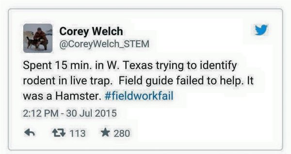 fieldwork-fails-hamster