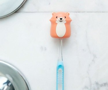 fox toothbrush holder suction