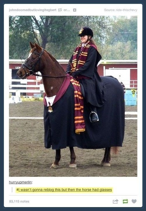 harry-potter-horse