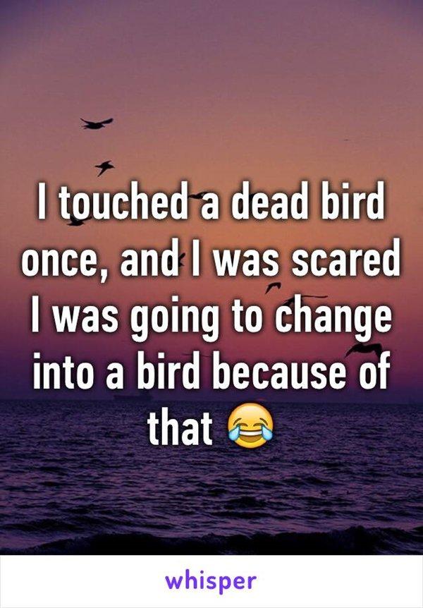 kid-beliefs-bird