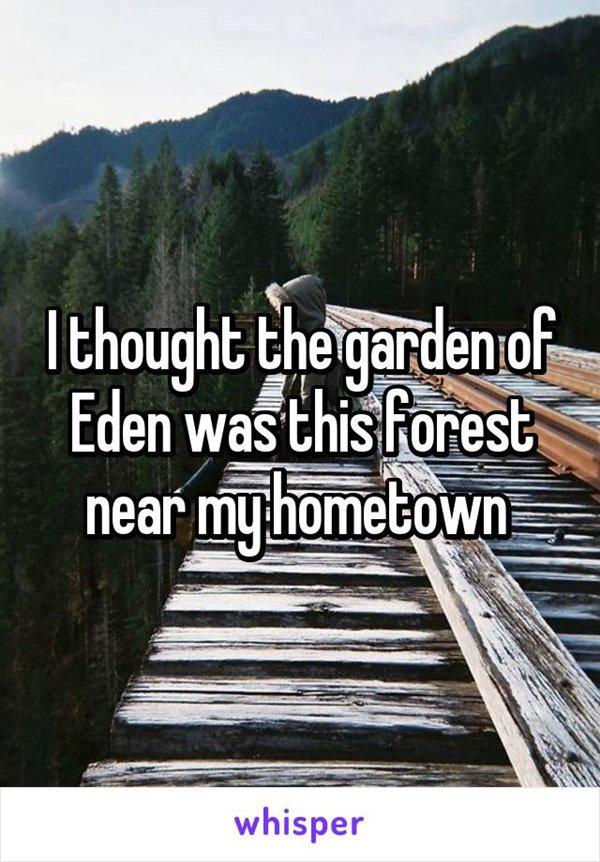 kid-beliefs-forest