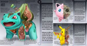pokemon anatomy