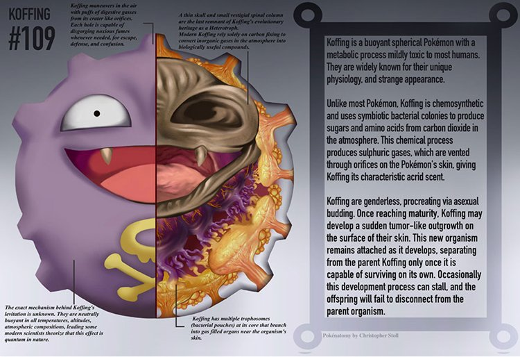 10 Illustrations Show Whats Under The Skin Of Your Favorite Pokemon