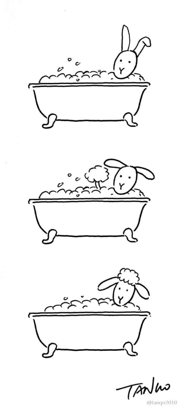 shanghai-tango-bunny