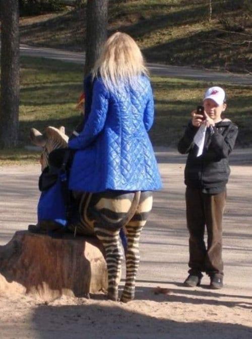 wrong-angle-zebra
