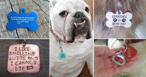 Hilarious Unique Pet Collar Tags