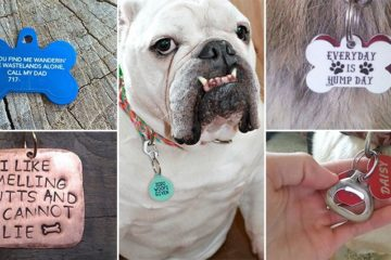 Hilarious Unique Pet Collar Tags