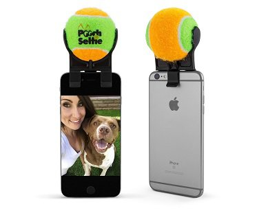 Pet Selfie Attachment tennis ball