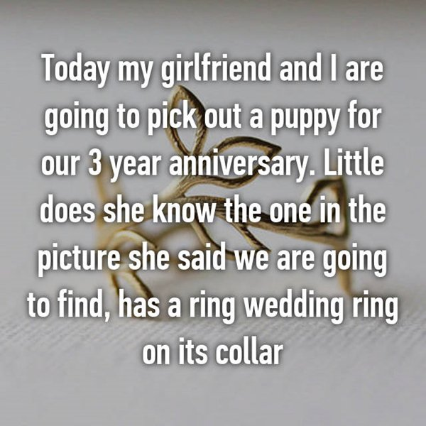 anniversary-surprises-puppy-ring