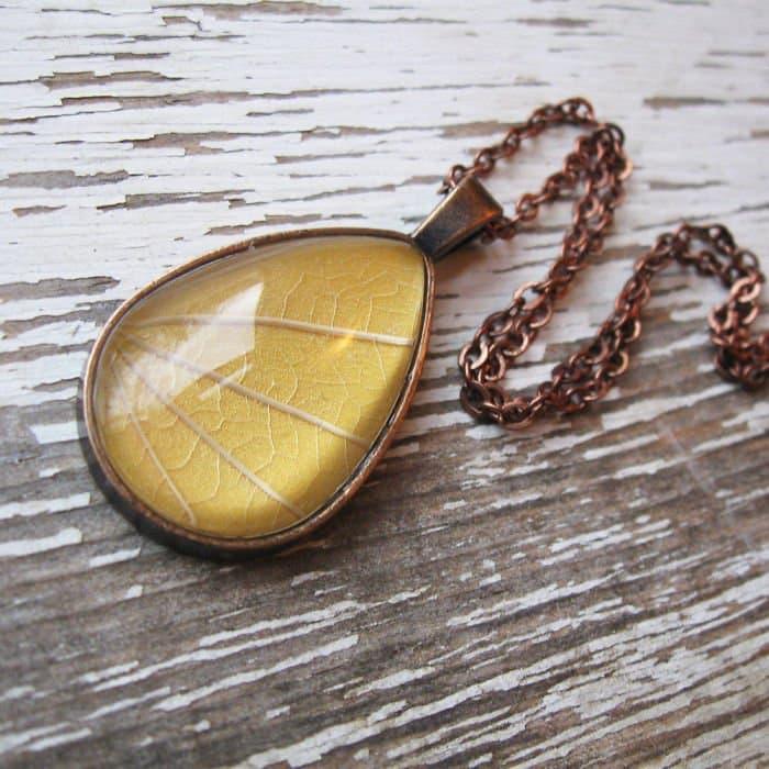 bronze-yellow-leaf