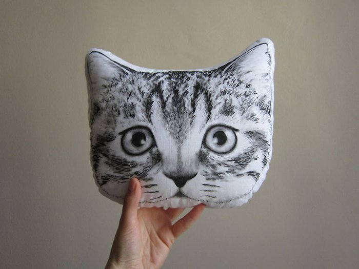 cat-full-shot