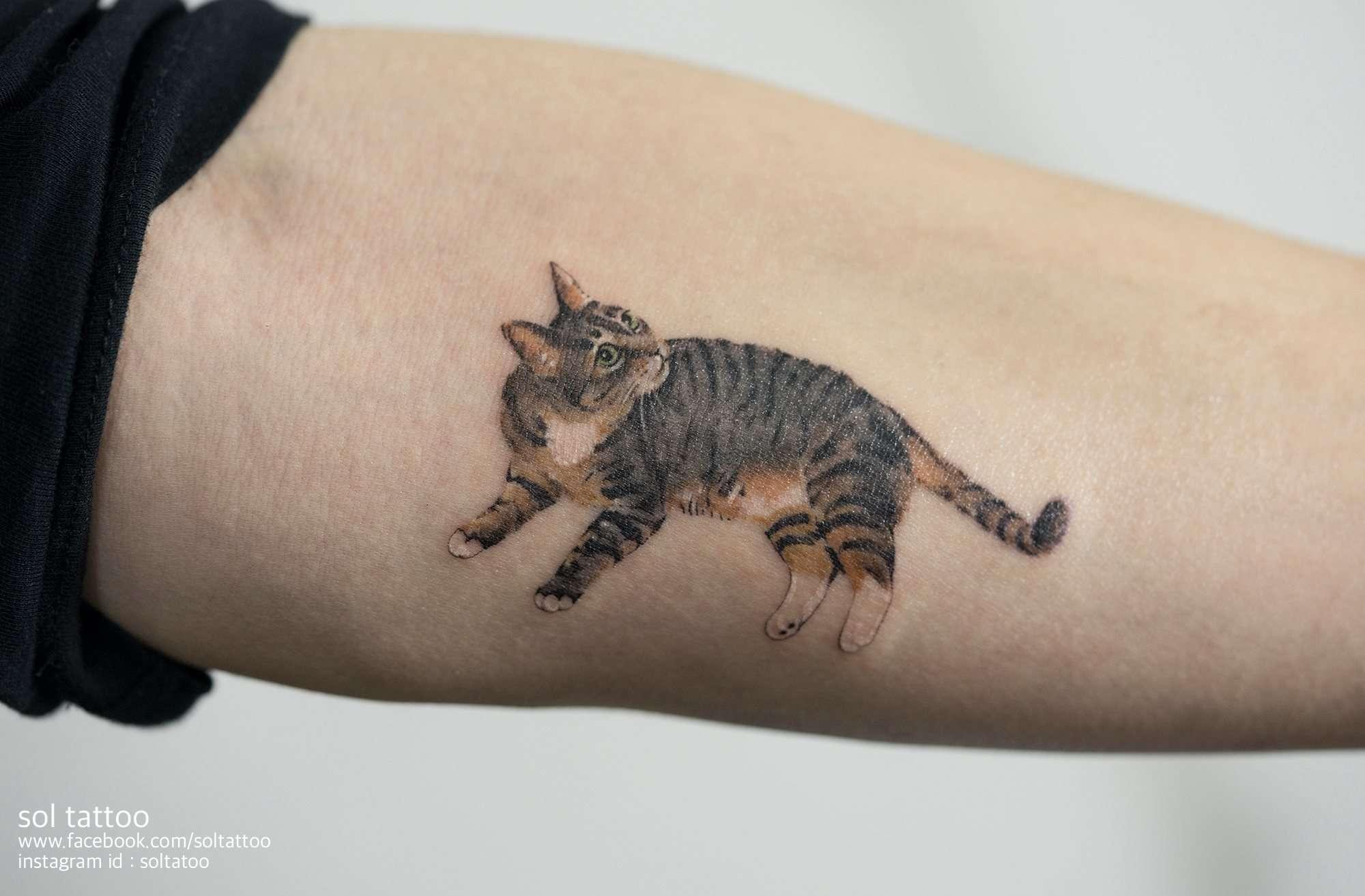 cat looking arm tattoo