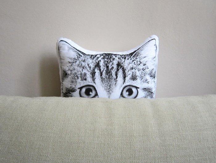 cat-peering