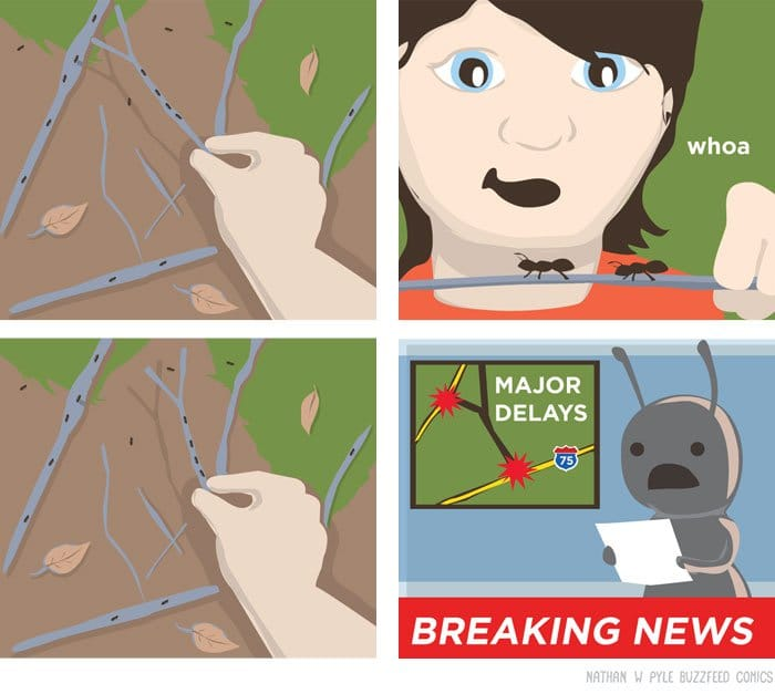 comics-nathan-w-pyle-ants-major-delays