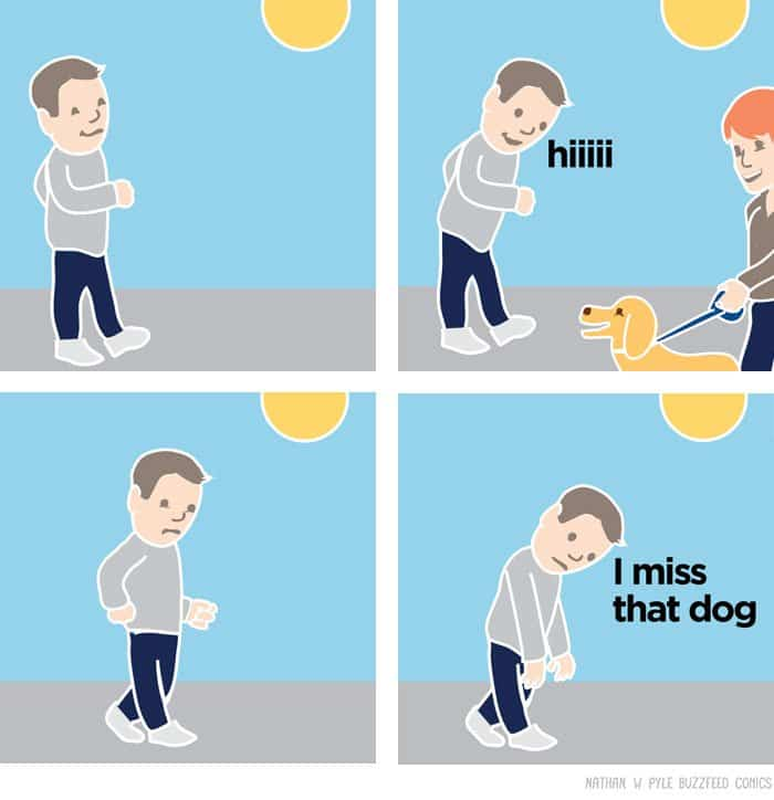 comics-nathan-w-pyle-miss-that-dog