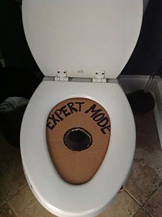 expert mode cardboard cut out for toilet seat