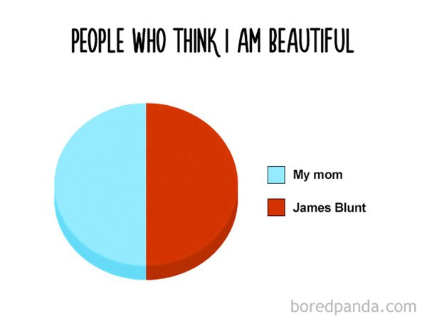 funny-pie-charts-blunt