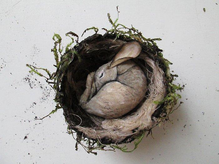 rabbit-in-nest