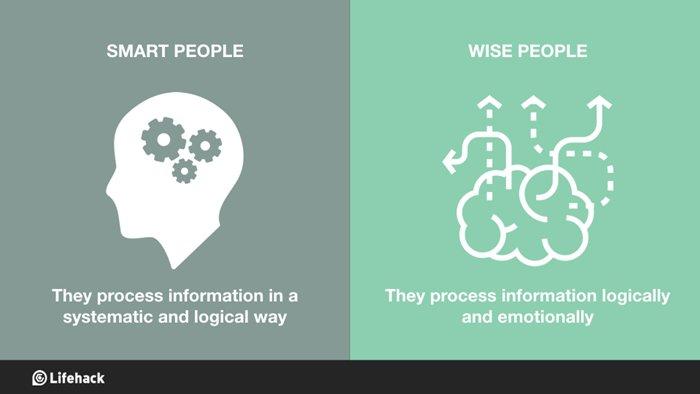 smart-v-wise-process-info-logical-emotional