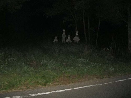 spooky-photos-roadside