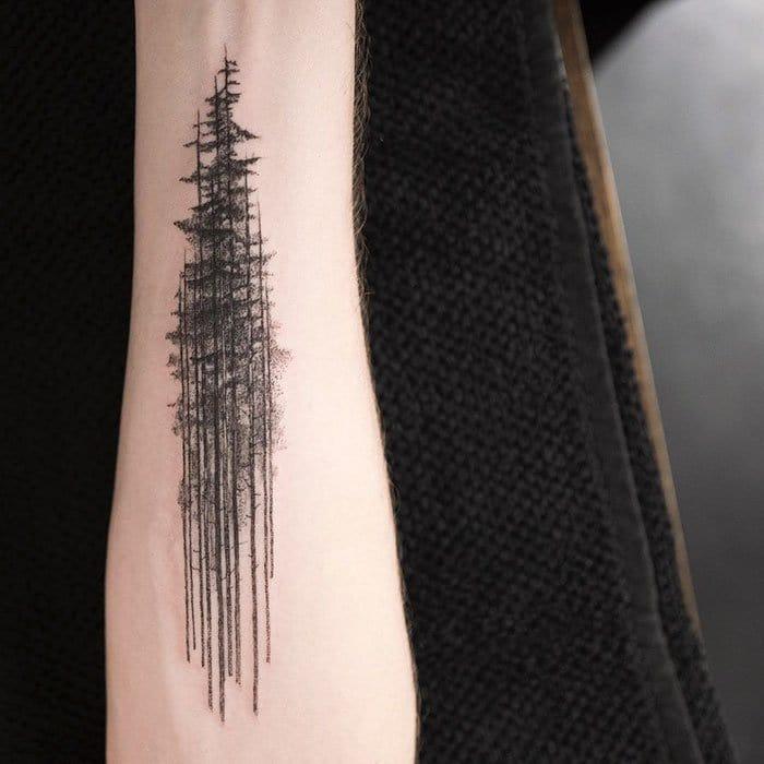 tall-trees