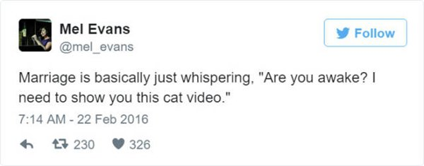 tweets-about-marriage-cat-video