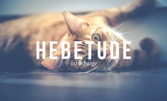 underused-words-lethargy-hebetude