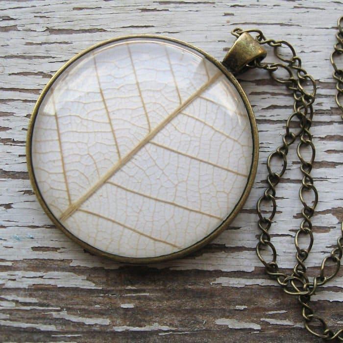 white-leaf-circle