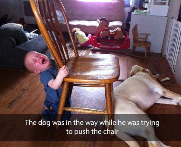 why-kids-are-crying-dog-in-way